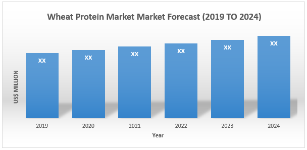 Wheat Protein Market1