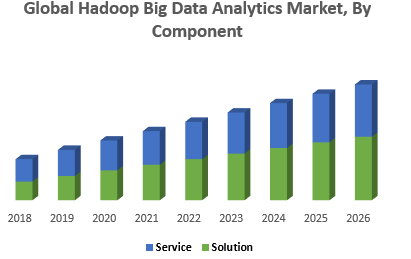 Global Hadoop Big Data Analytics Market, By Component