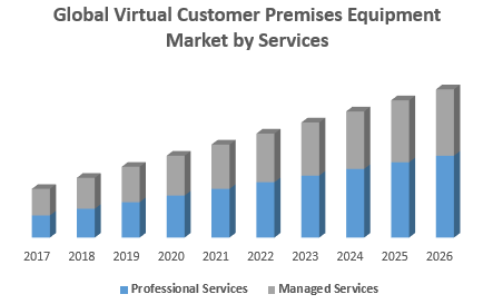 Global Virtual Customer Premises Equipment Market by Services