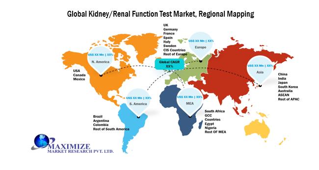 Global Kidney Renal Function Test Market 1