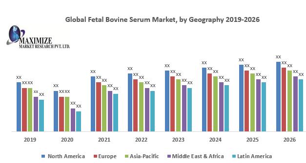 Global Fetal Bovine Serum Market