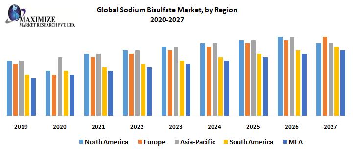 Global Sodium Bisulfate Market, by Region