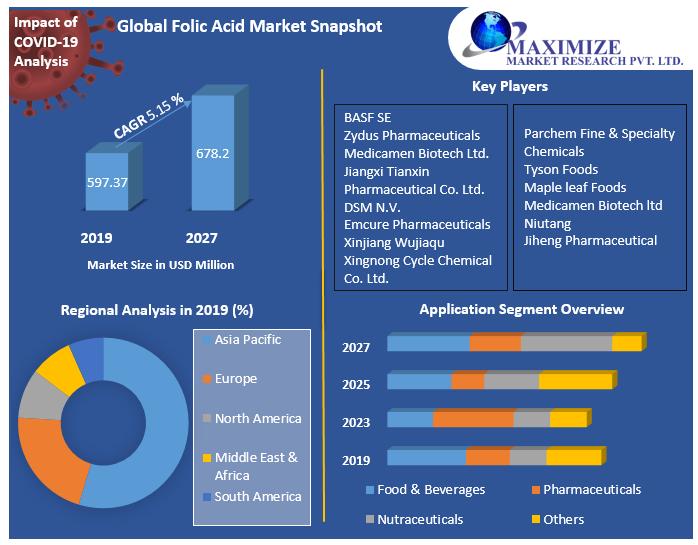 Global Folic Acid Market Snapshot