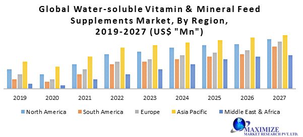 Global Water-soluble Vitamin & Mineral Feed Supplements Market