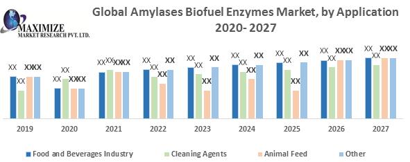 Global Amylases Biofuel Enzymes Market