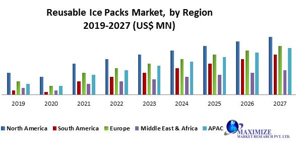Reusable Ice Packs Market