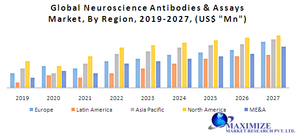 Global Neuroscience Antibodies & Assays Market