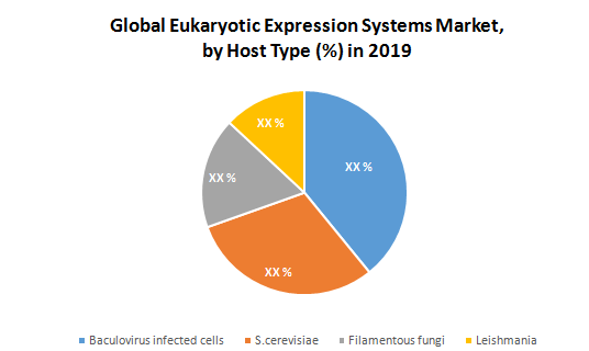 Global Eukaryotic Expression Systems Market