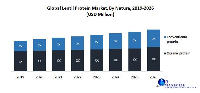 Global Lentil Protein Market