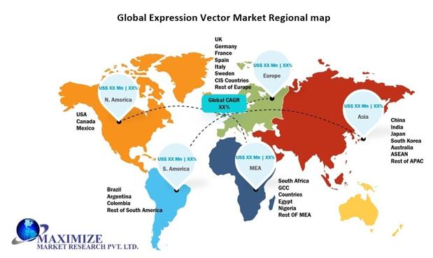 Global Expression Vector Market