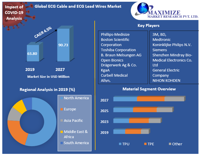 Global ECG Cable and ECG Lead Wires Market