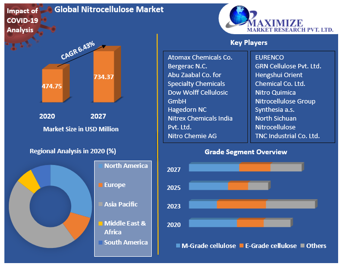 Global Nitrocellulose Market