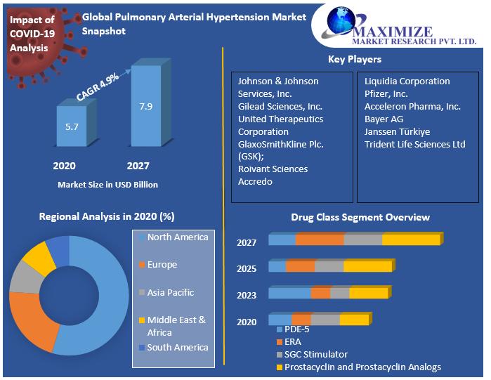 Global Pulmonary Arterial Hypertension Market